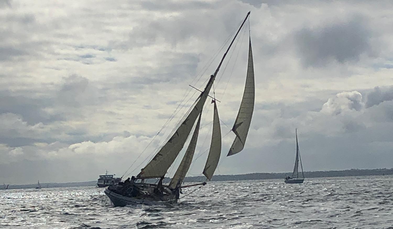 47' Classic Cutter Boojum sailing